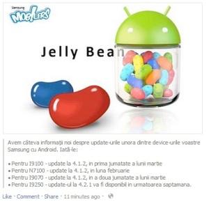 update jelly bean